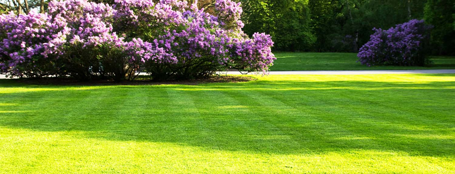 lawn-leveling