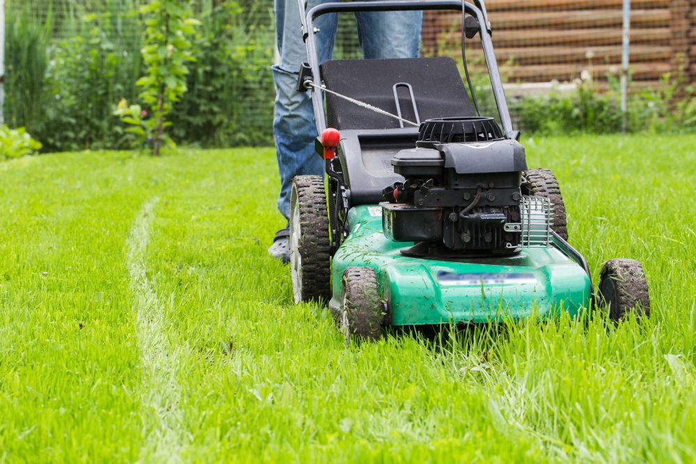 How to Level Your Yard Without Killing the Grass