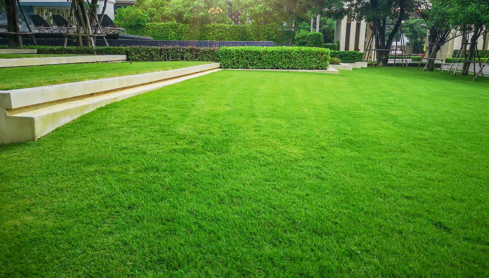 How a Lawn Leveling Contractor Can Prevent You From Injury